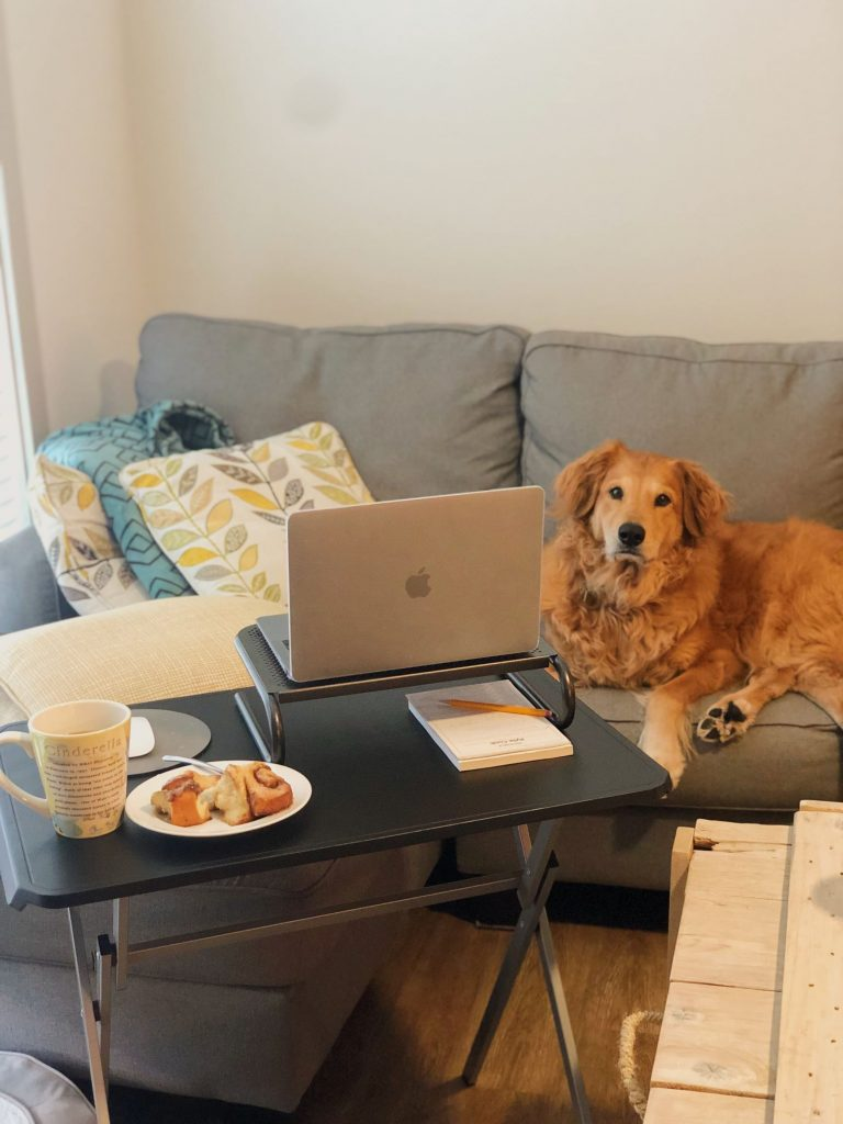 working from home 1